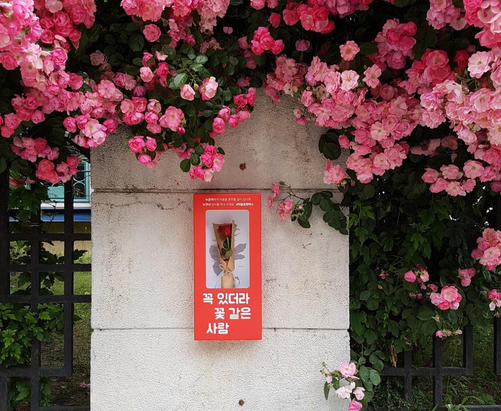 마음표현박스 설치 예시. 빨간 마음표현박스에 담긴 장미꽃으로 마음을 표현하세요. 기부도 결국 마음을 여는 일입니다.