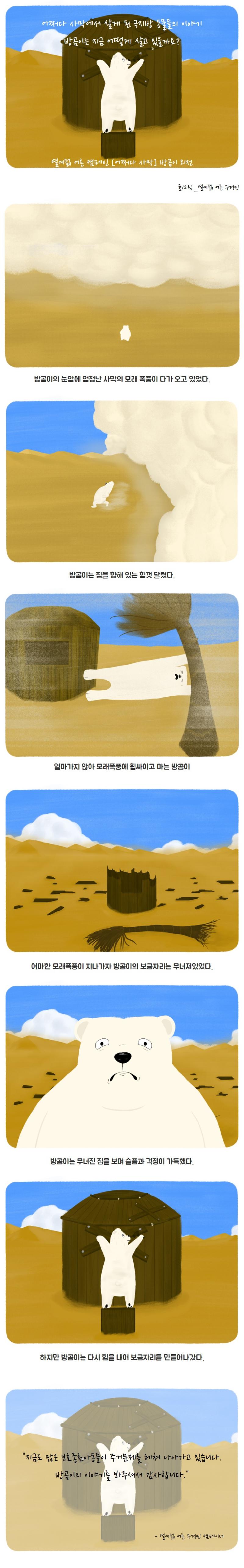 어쩌다 사막에서 살게된 방곰이, 그리고 그 이후의 방곰이의 이야기