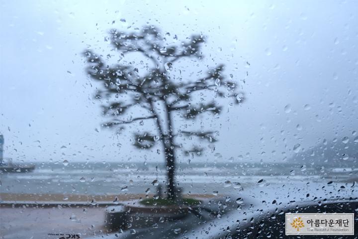 비가 왔던 그날 풍경