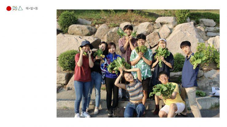 해밭똥 멤버들이 도시 텃밭 농사를 통해 수확한 배추를 들고 카메라를 바라보고 있다